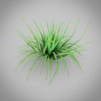 3D grass nature model