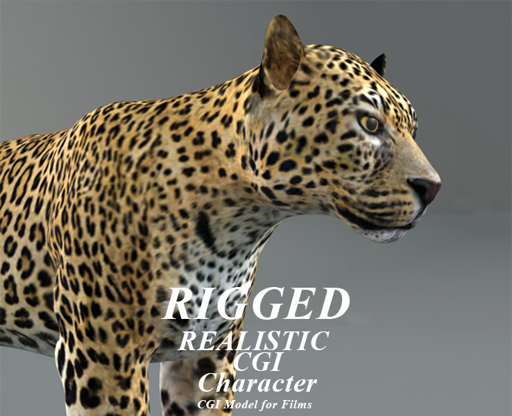 rigged leopard 3D model