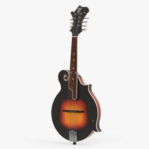mandolin music instrument model