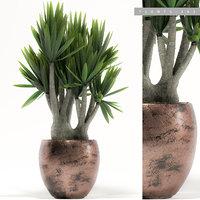 3D model plants garden