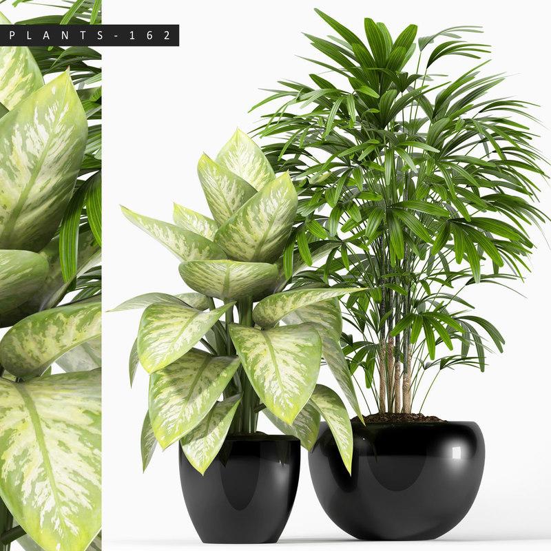 plants 162 model