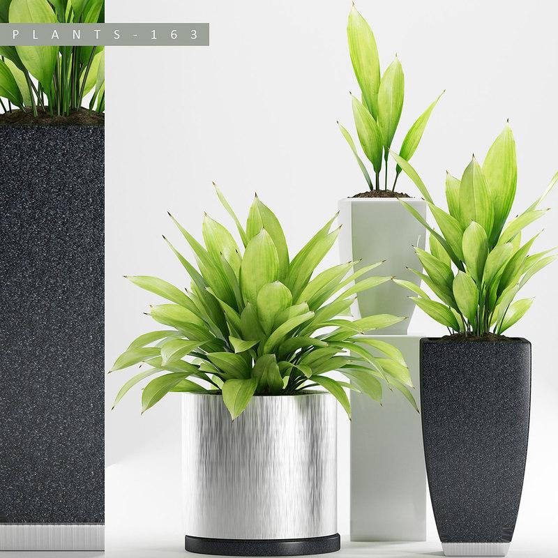 3D model plants 163 set