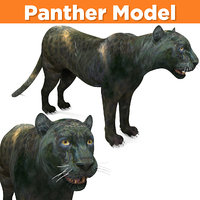Realistic Panther 3D Models game ready
