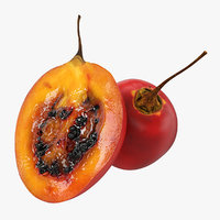 3D tree tomato tamarillo half model