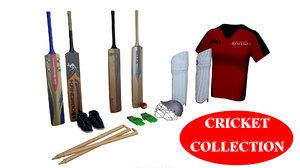 cricket wicket sport model