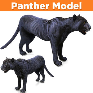 black panther ready 3D model