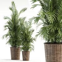 plants 93 3D model