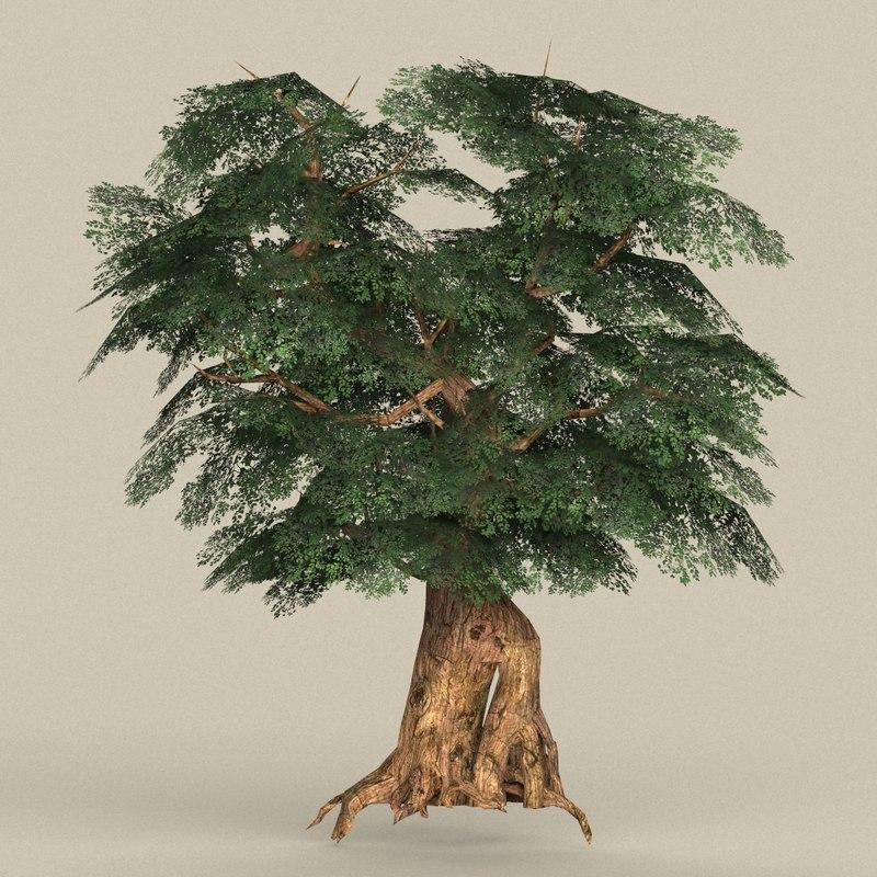 ready tree 3D