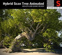 tree scanned ready model