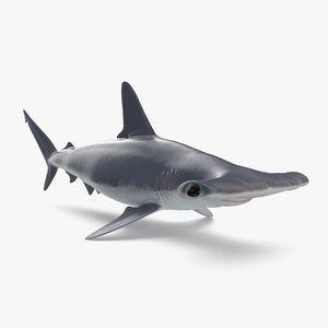 3D hammerhead shark