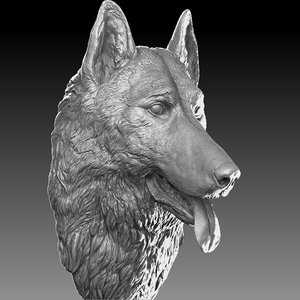3D model german shepherd head