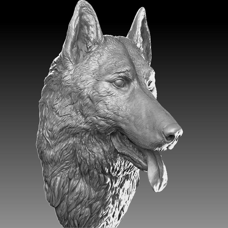 3D model german shepherd head