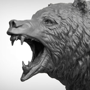 3D bear realistic head