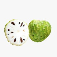 3D model lightwave cherimoya