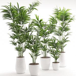 3D houseplant 18