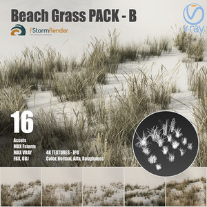 3D beach grass pack b