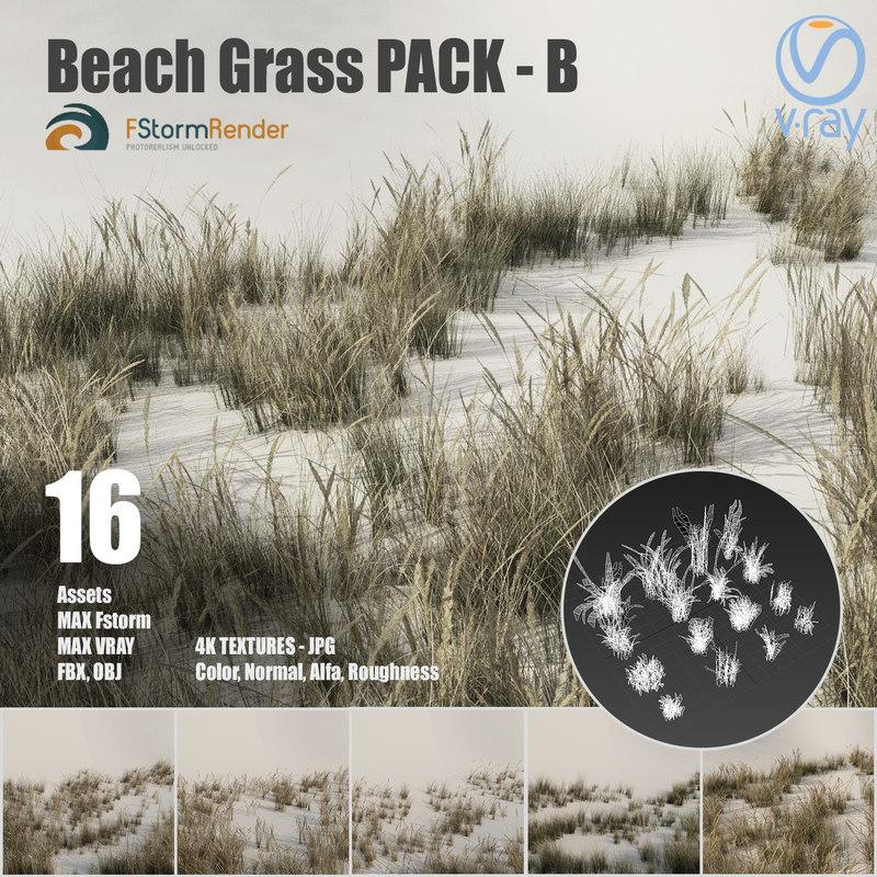 3D beach grass pack b
