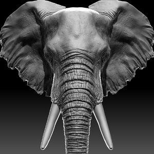 3D model elephant head