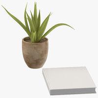 3D model book succulent