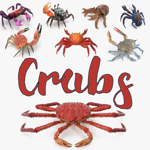 crabs 3 model