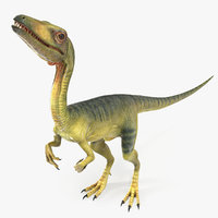 dinosaur compsognathus worried pose 3D model
