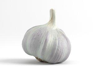 3D photorealistic scanned garlic model