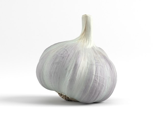 3D photorealistic scanned garlic model
