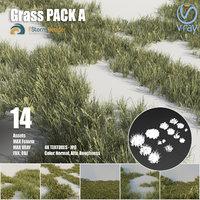 3D grass pack plant model