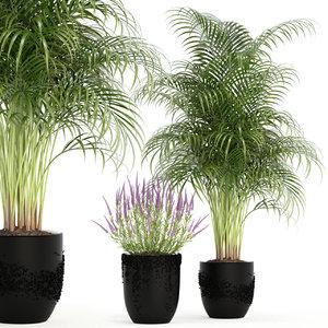 plants 97 3D model