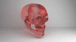 3D human skull glass model