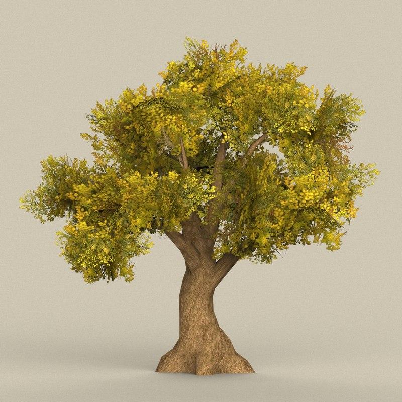 ready tree 3D model