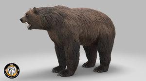 3D arctotherium bear