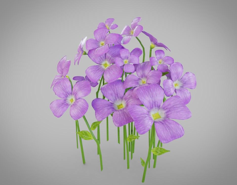flower purple 3D