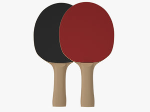 ping pong paddle model