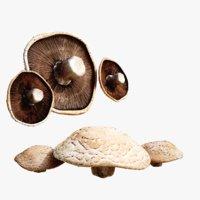 3D lightwave mushroom model