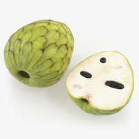 cherimoya fruit half model