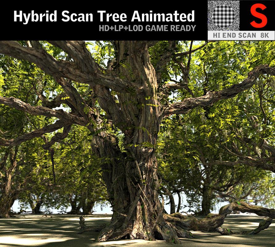 3D tree hd model