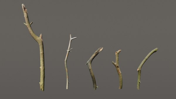 pack 5 sticks 3D model
