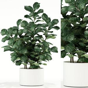 3D plants 98
