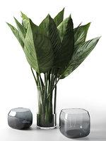 glass vases leaves 3D model