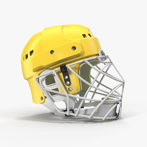 3D ice hockey helmet protective model