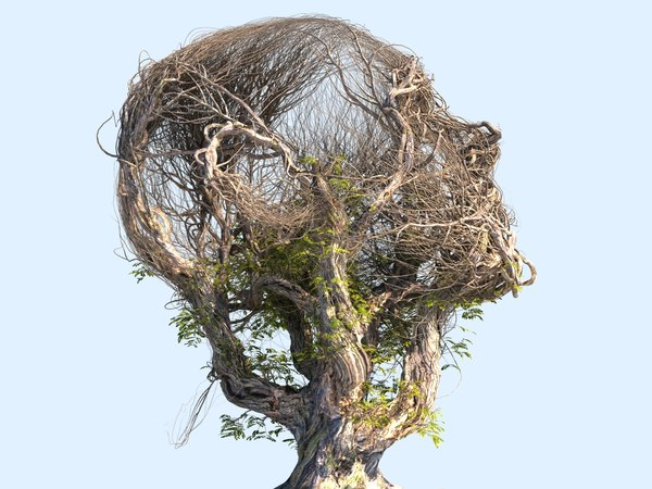 3D tree head hd