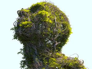 tree head hd 3D