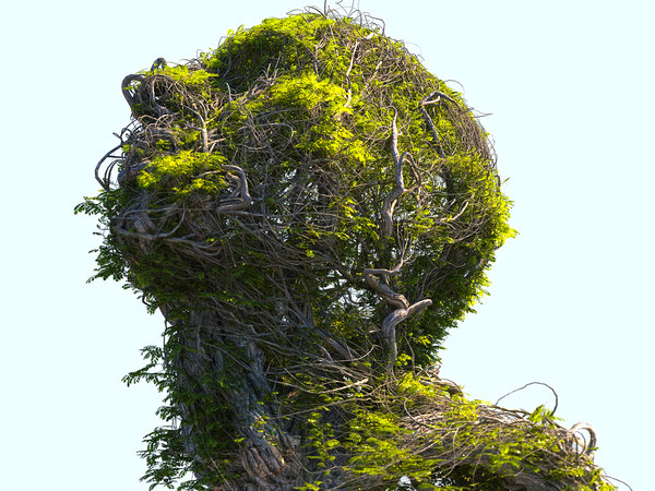 tree head hd 3D