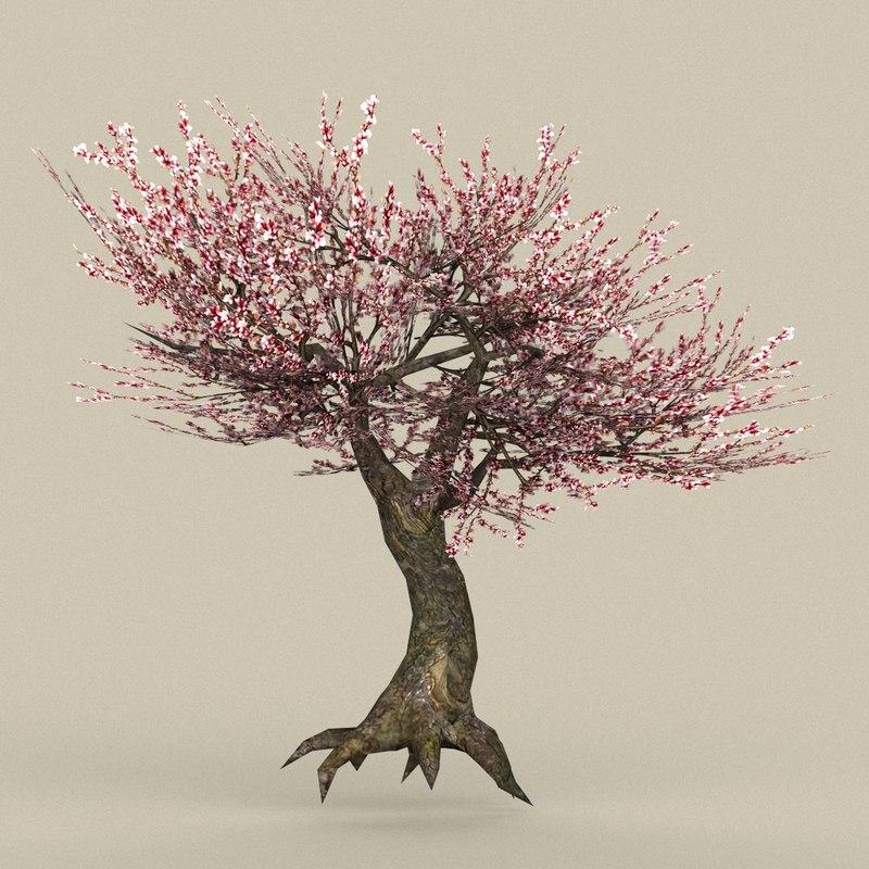 3D ready tree