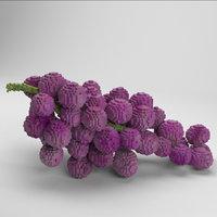 voxel grapes 3D model