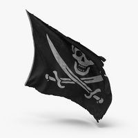 pirate flag model