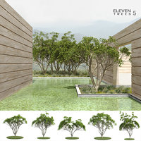 trees 5 3D model