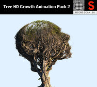 tree head hd 3D model