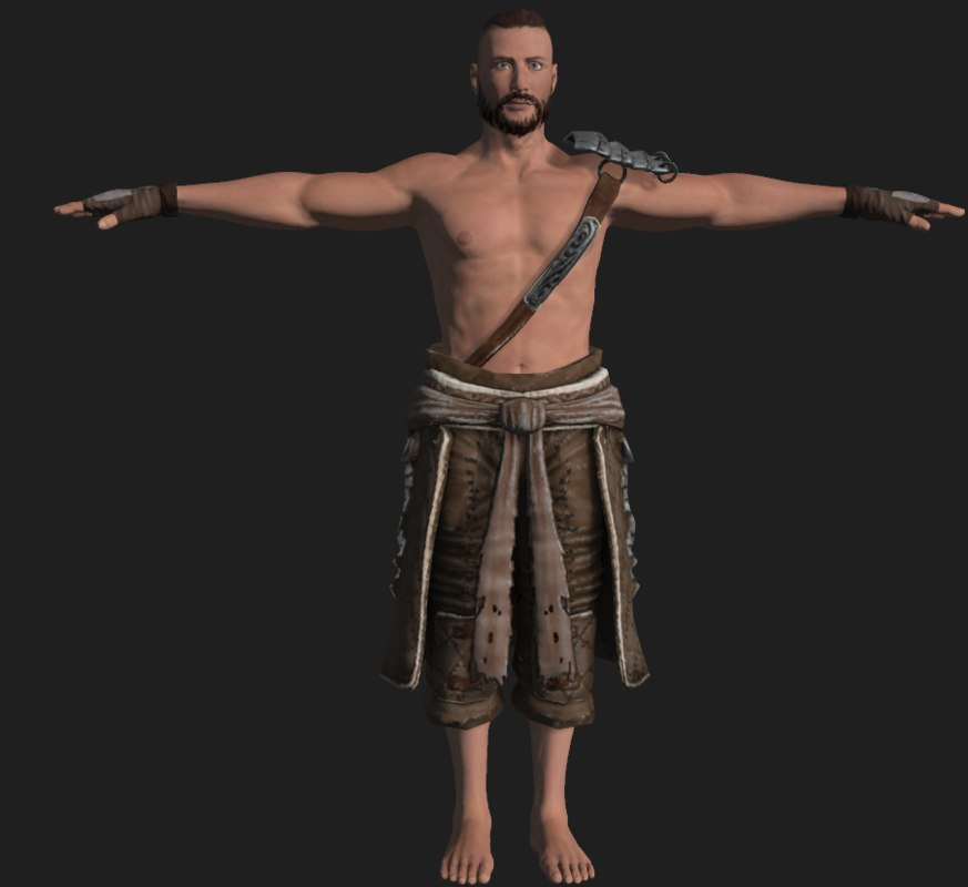 male viking 3D